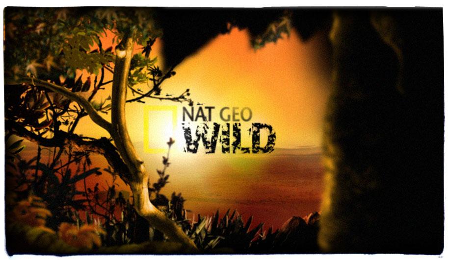 Nat Geo Wild - luisparis com ar