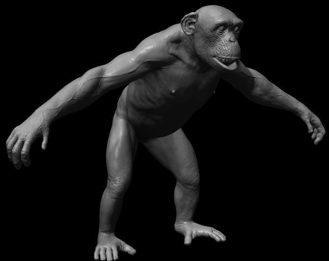 Chimpanzee - PaulLiaw - Personal network